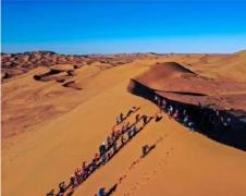 沙漠掘金(敦煌密藏)