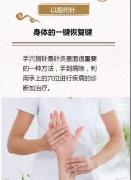 舒氏《彩超手》全息诊断+舒氏指针治疗||知病与治