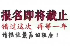 临沂春华教育函授学历提升,考试报名入口