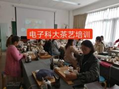 成都茶艺培训班,电子科大茶艺培训课程