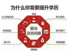 国家开放大学网络远程教育全程托管招生简章