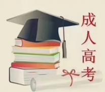 学历提升(高起专、专升本)学信网查询