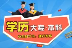 上海学历进修 网络 自考专科本科报名 正规学历