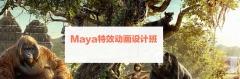 影视Maya特效动画设计