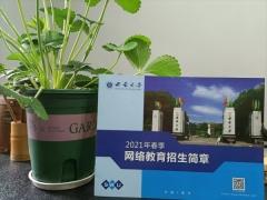 中国传媒大学专科本科娄底报考中心